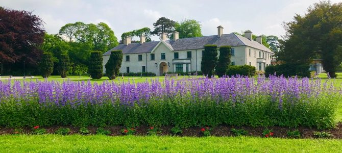 Charming Things To Do In Killarney For First Time Visitors