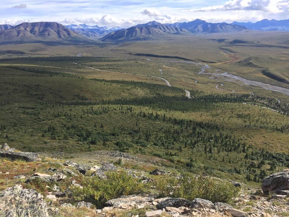Alaska Itinerary Denali Mile 15