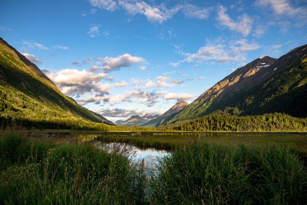 Anchorage to Seward Moose Pass