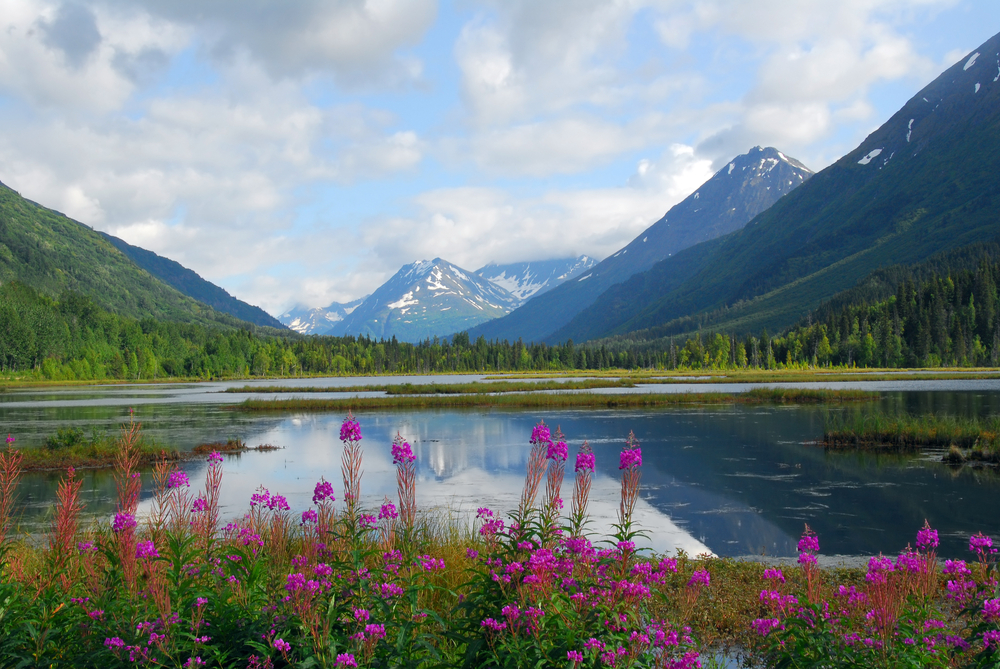 Anchorage to Seward Tern Lake