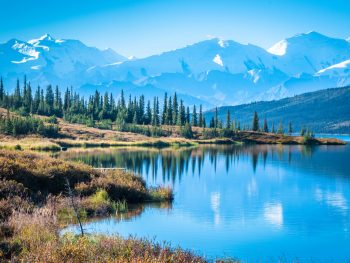 Denali National Park in Alaska is breathtaking