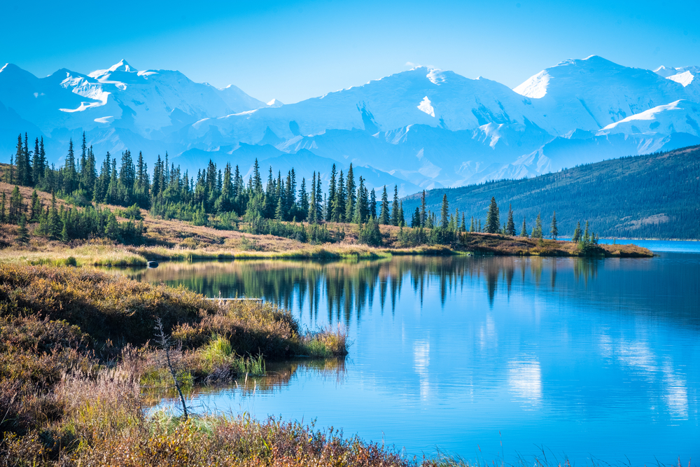 Denali National Park in Alaska is breathtaking