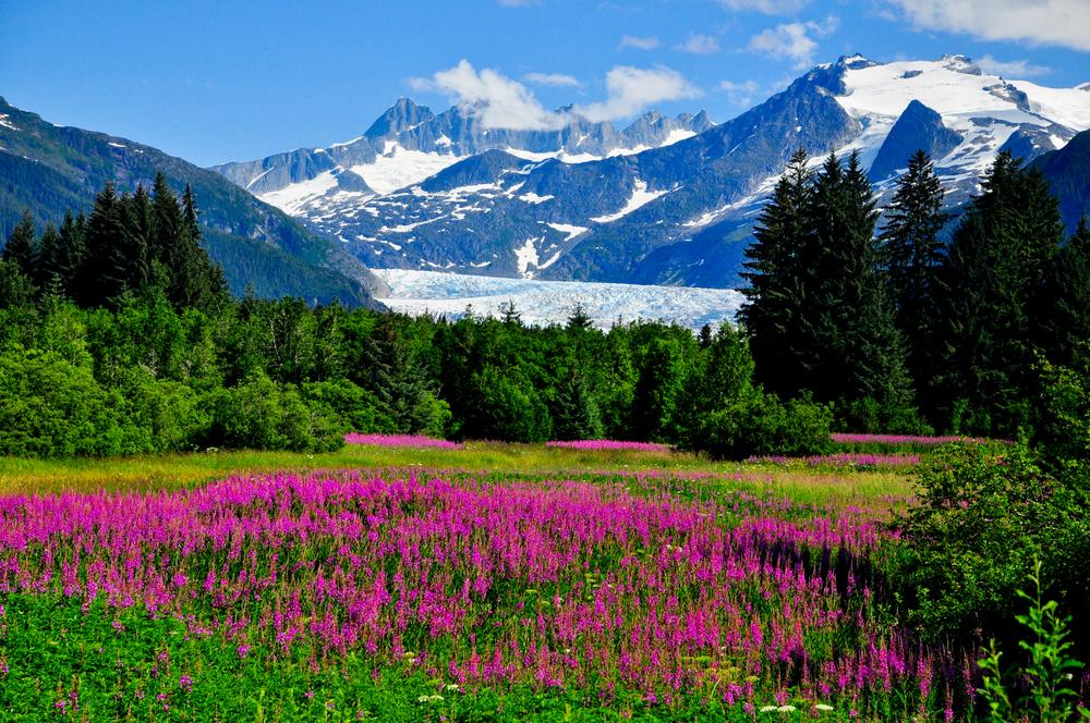 Seeing epic views of Alaska mountains