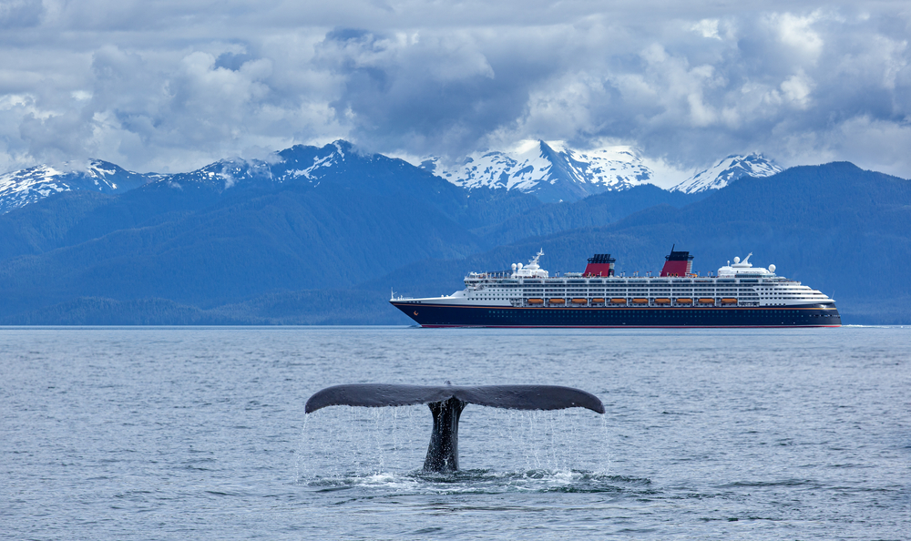 Alaska cruise ship with snow top covered mountains in background and whale tail out of water in foreground