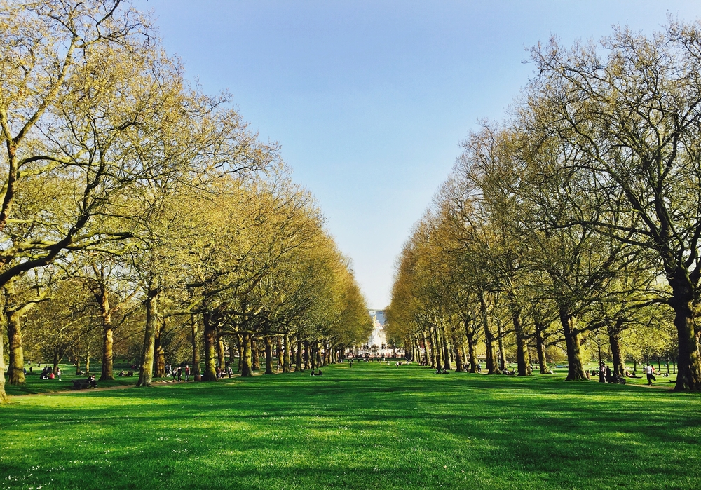 Visit Green Park during your 5 days in London