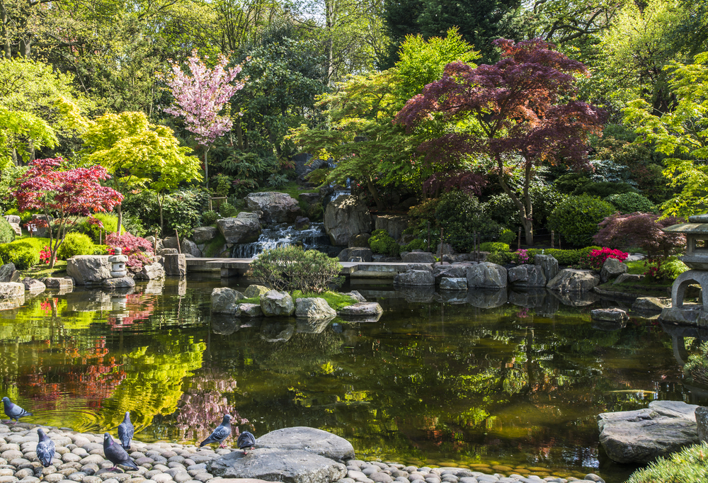 A great option for your London itinerary is seeing Kyoto Gardens London