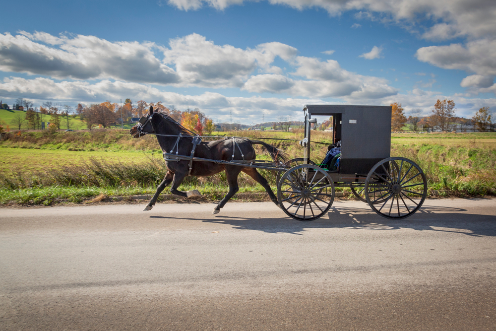 Visiting the Amish in Holmes County Ohio is a must-do