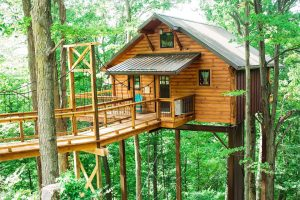wooden cabin with bridge on stilts high in green trees