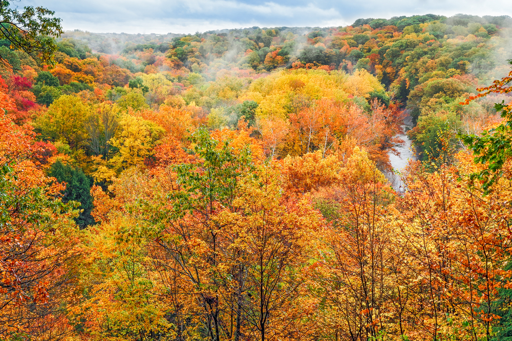Fall foliage in Ohio is at its best at Cuyahoga Valley National Park