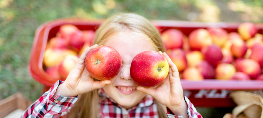 Children have so much fun in Ohio apple orchards