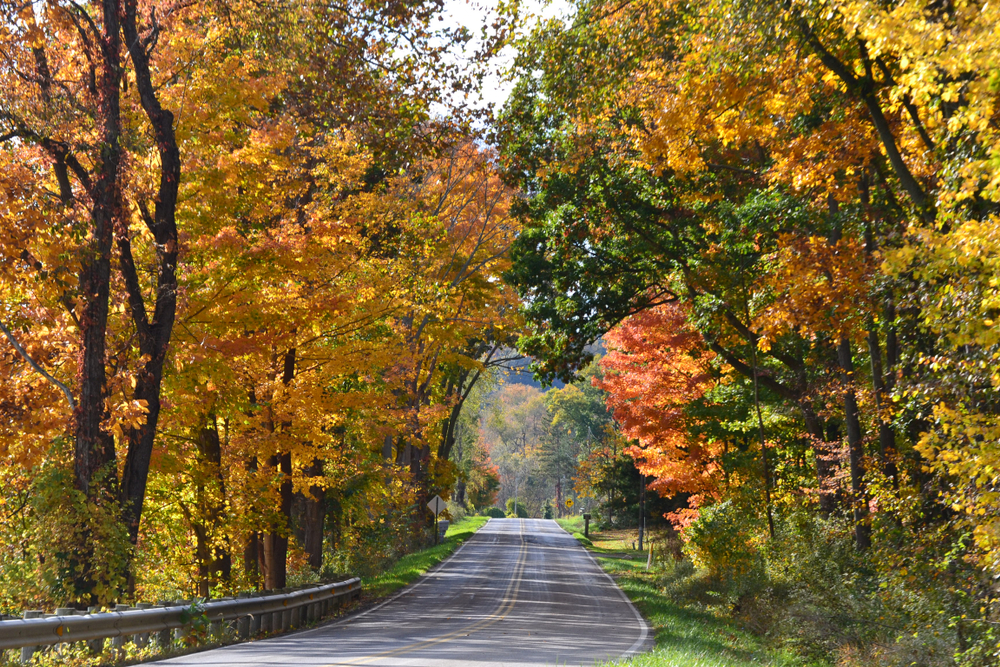 Be on the lookout when Driving Ohio roads for spectacular Ohio fall foliage.