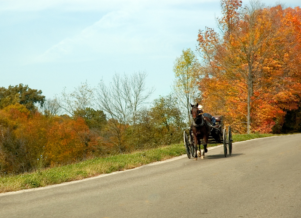 Holmes County is one of the best places to see fall foliage in Ohio