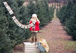 girl surrounded by Christmas trees holding Merry Christmas banner