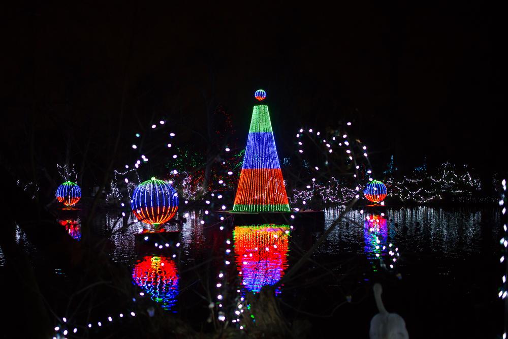 Festive Christmas lights set against black night sky