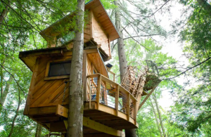two story wooden treehouse