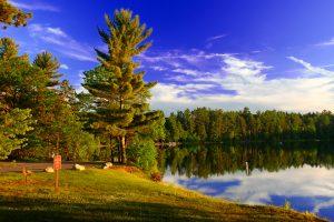 green trees along lakefront Midwest Weekend Getaways