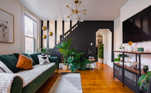 modern living room area filled with rare plants best Airbnbs in Columbus