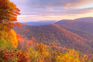 autumn in Shenandoah national park Airbnbs in Virginia