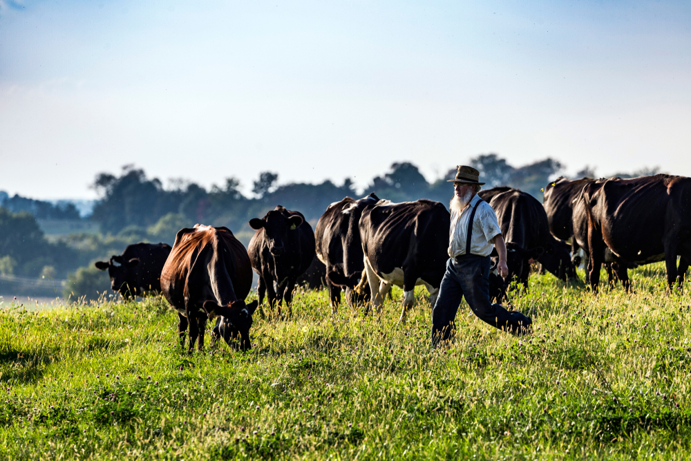 A farmer in Amish Country Ohio