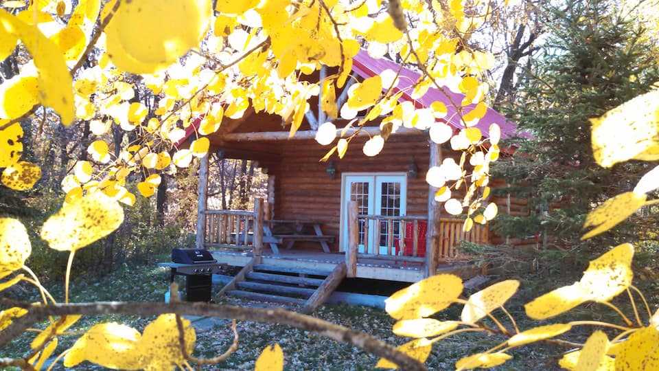 Cool Cabin in North Dakota with double French door entrance, generous sized front porch with leaves in foreground!