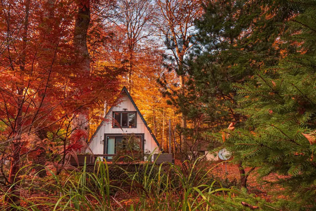 a white a-frame cabin surrounded by maple leaves in the fall