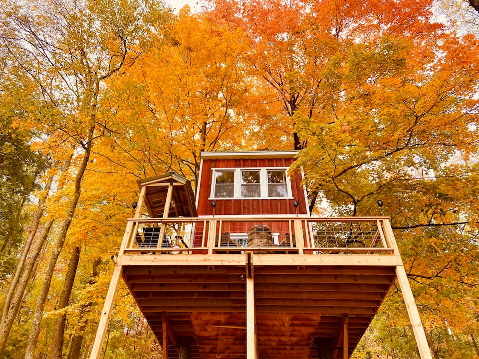 Looking up at a red treehouse surrounded by yellow maple leaves in the fall.