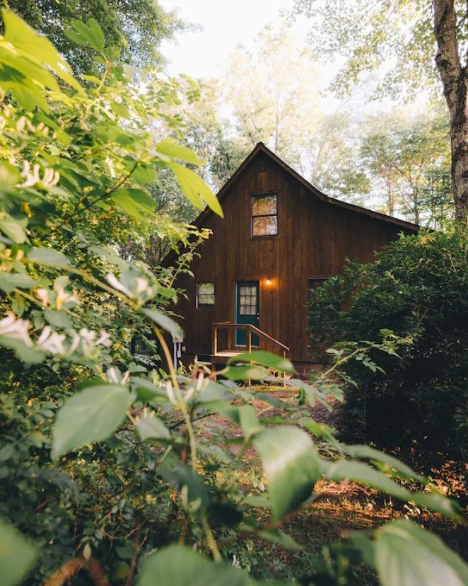 The exterior of a dark wood cabin surrounded by trees and shrubs. It is hidden behind some shrubs, making it feel secluded. The cabin has a blue door and a peak in the front. It is one of the best cabins in Ohio.