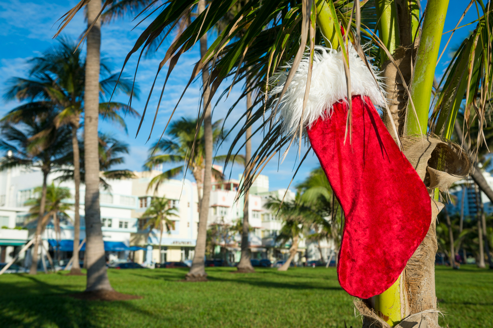 Christmas stocking hanging from a Palm Tree