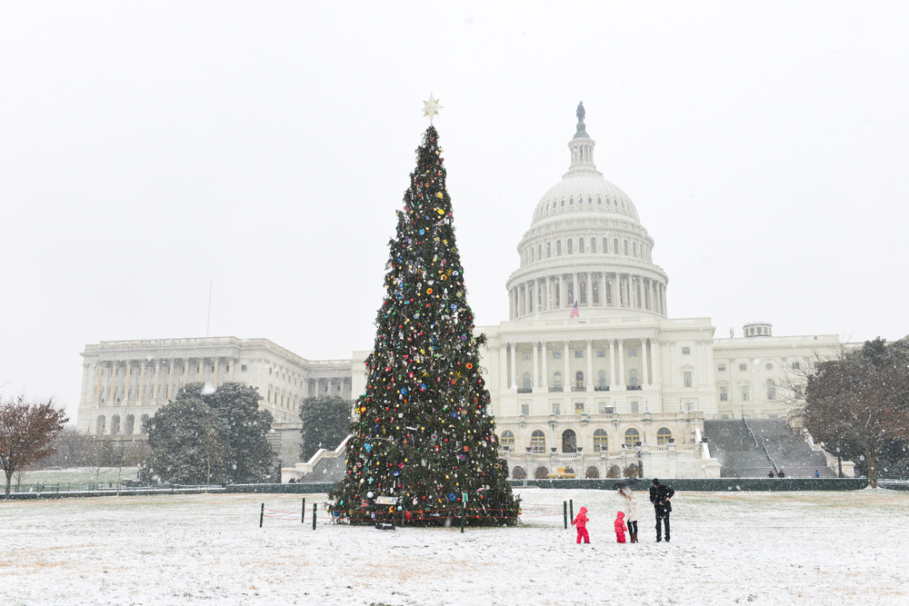 Christmas Tree on a snowy lawn in front of the Capitol Building Washington a Christmas vacations in the USA