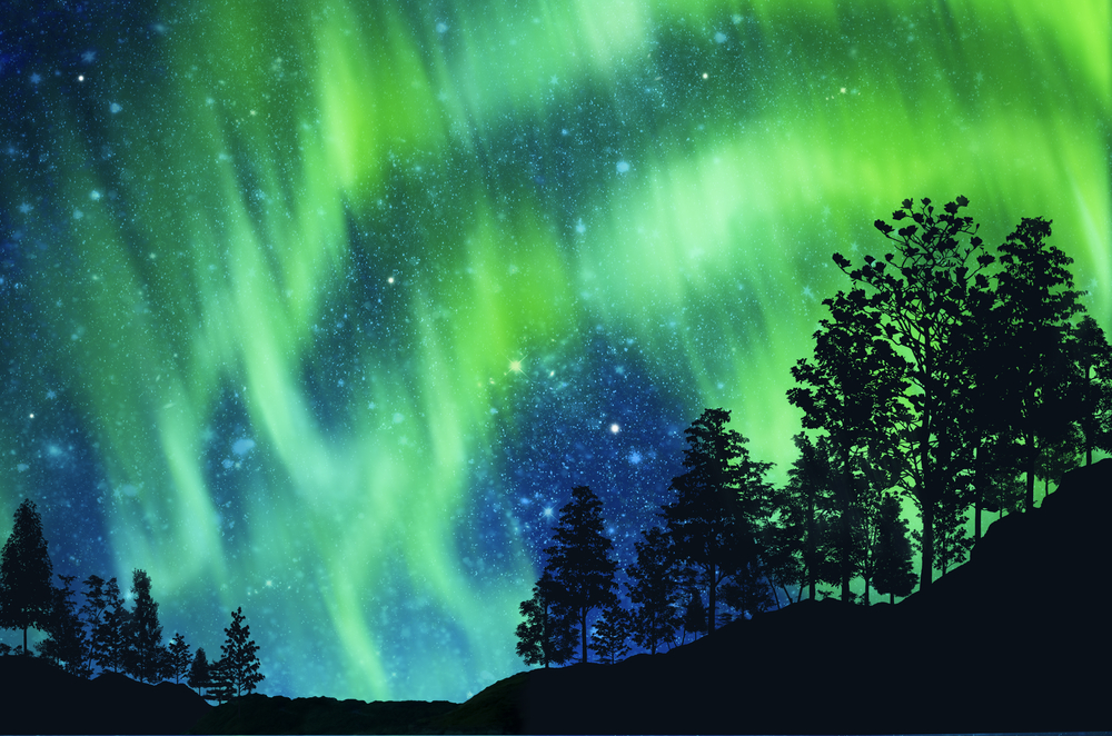 Bright  green colors illuminate dark night sky full of stars with evergreen trees in foreground.