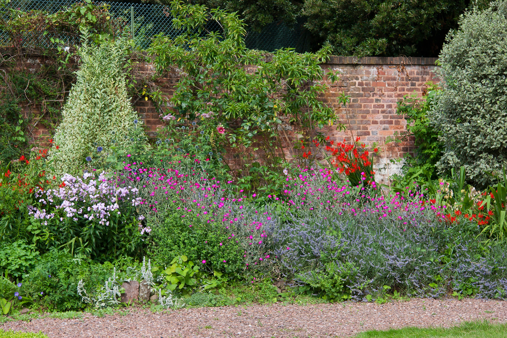 A classic English cottage style garden against a brick wall. There are blue, red, purple, and pink flowers. There are also shrubs and vines growing on the brick wall.